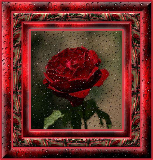 http://marinette.do.am/image/image217.jpg