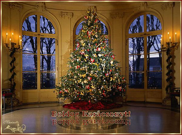 http://marinette.do.am/image/kerstboom.jpg
